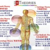 Unveiling the 5 Theories of Human Ageing and Diseases 人类哀老和疾病的五大学说